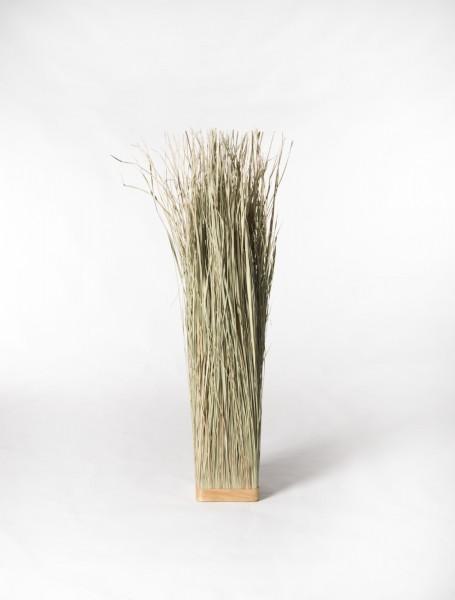 Gras Elymus Repens, natur, T 17 cm, B 17 cm, H 100 cm
