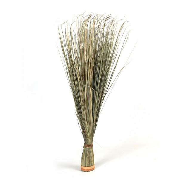 Elymus Repens, Ø 11, H 110 cm, natur