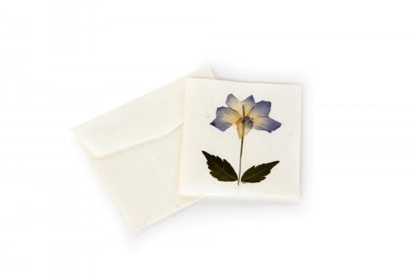 Grußkarte klein, weiß, T 7 cm, B 7 cm