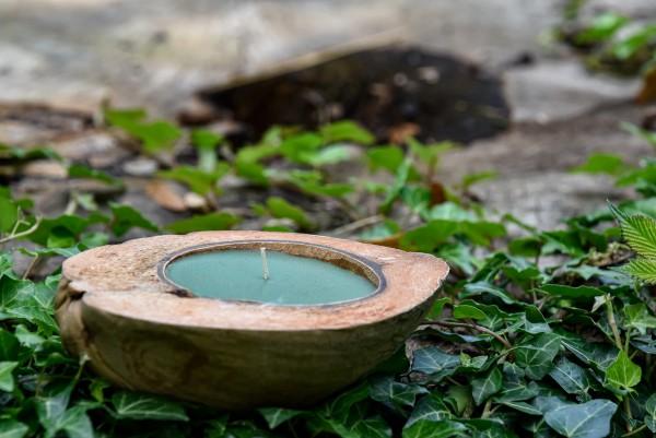 Duftkerze 'Lemongrass', in Kokosnusshälfte, grün, blau, Ø 13-17 cm