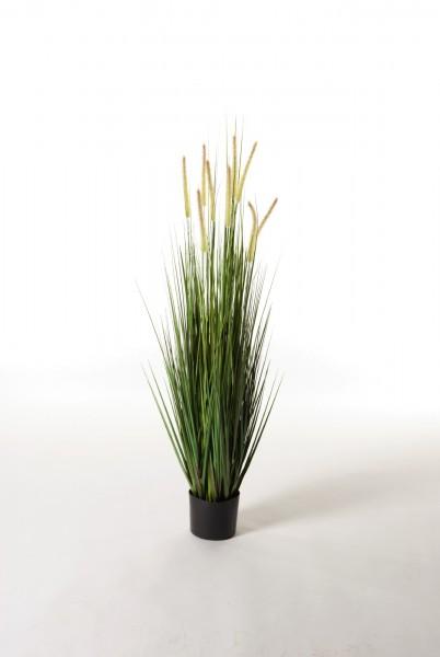 """Kunstpflanze """"Japanisches Gras"""", grün, H 120 cm"""