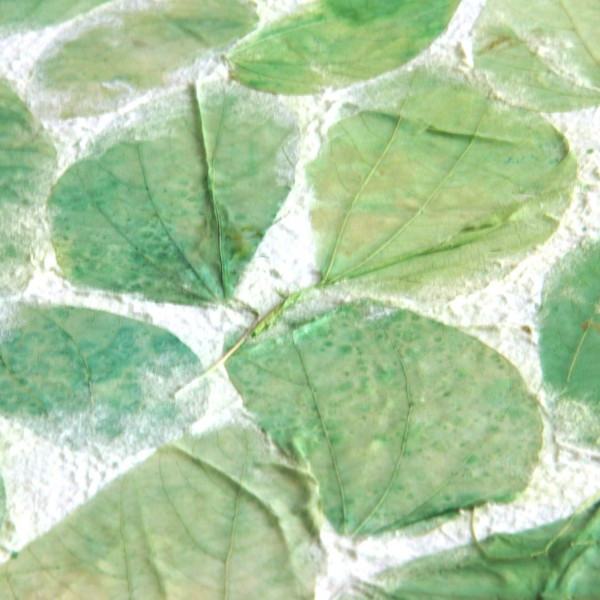 Geschenkpapier grüne Blätter, weiß, grün, T 79 cm, B 53 cm