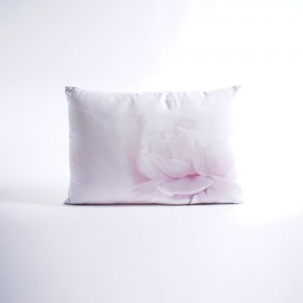 """Fotodruck-Kissen """"Weiße Rose"""", inklusive Füllung, L 35 cm, B 50 cm"""