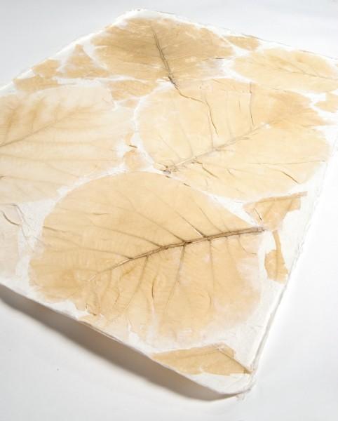 """Geschenkpapier """"Teakblatt"""", handgeschöpft, L 55 cm, B 80 cm"""