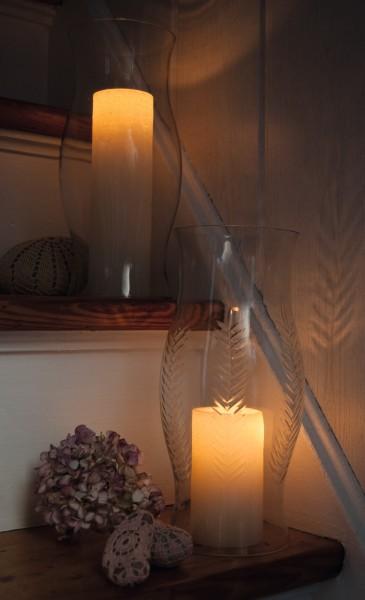 """Windlicht """"Twig"""", klar, Ø 12 cm, H 30 cm"""