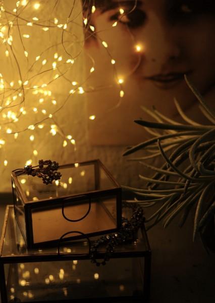 Indoor & Outdoor Lichterschnur 'Lumois', 125 LED, 13 Strippen, 100cm