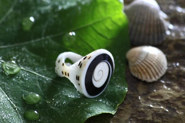 Ring Muschel organisch, natur, T 3 cm, B 3 cm