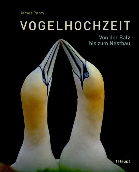 Buch 'Vogelhochzeit - Von der Balz bis zum Nestbau'
