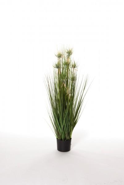 """Kunstpflanze """"Papyrusgras"""", grün, H 110 cm"""