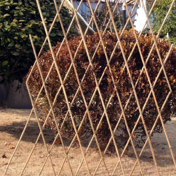 Bambusrankgitter groß, auseinanderziehbar bis 250 cm x 180 cm