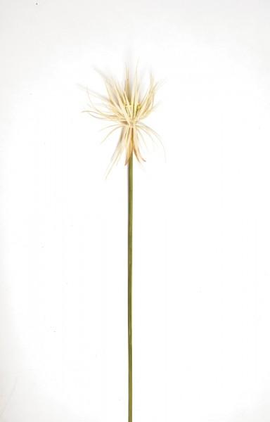 """Kunstpflanze """"Papyrusgras Halm"""", weiß, H 120 cm"""