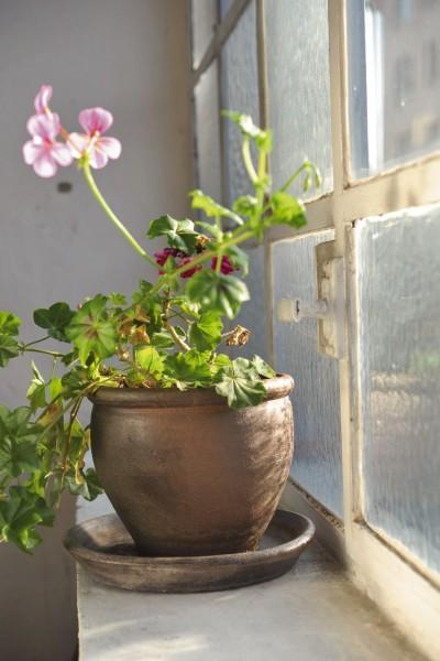 Pflanztopf 'PT', natur, T 40 cm, B 40 cm, H 30