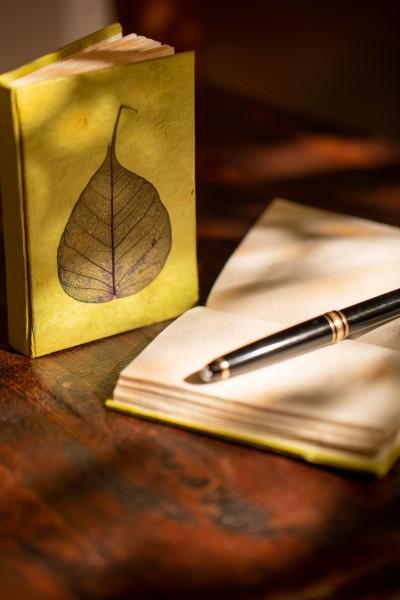 Notizbuch 'Blatt' aus handgeschöpftem Papier, grün, B 8 cm, H 11,5 cm