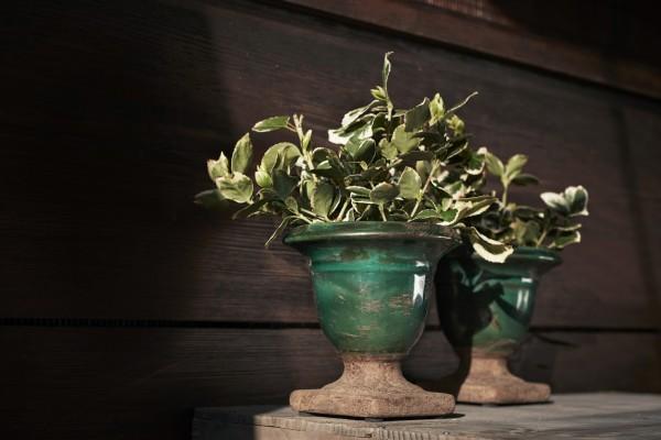 Pflanztopf 'Foix S' aus Keramik klein, grün, Ø 12 cm, H 12 cm