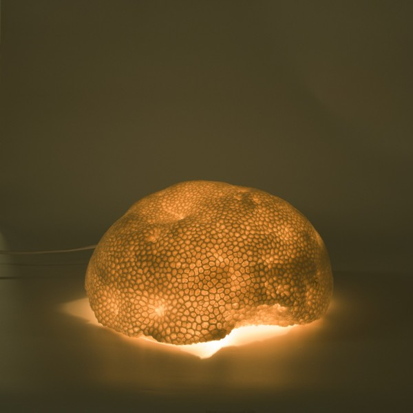 Leuchte 'Korallenstein', B 34 cm, H 18 cm