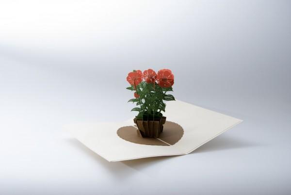 Pop Up Karte 'Mohnblume', rot, T 13 cm, B 18 cm