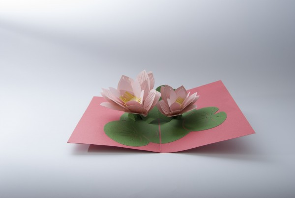Pop Up Karte 'Seerose', rosa, grün, T 18 cm, B 13 cm