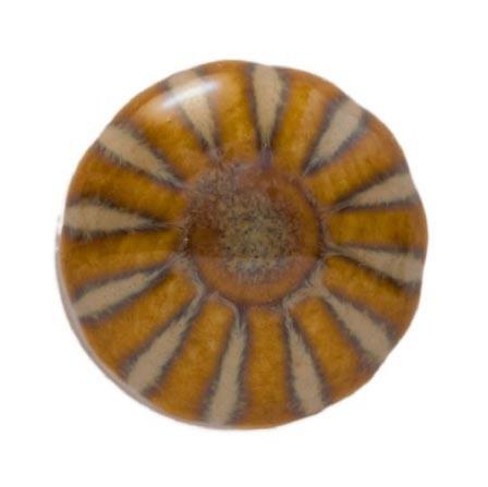 Knopf rund, braun gestreift, Ø 2 cm