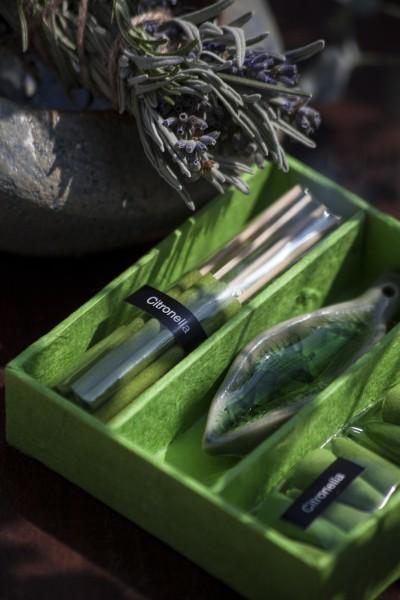 Räucher-Box, grün, T 10 cm, B 10 cm, H 2,5 cm