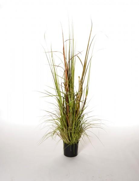 """Kunstpflanze """"Schilfgras"""" mit Topf, H 120 cm"""