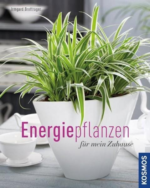 Buch 'Energiepflanzen für mein Zuhause'