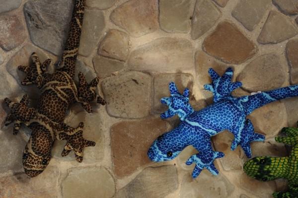 Sandtier 'Gecko' Longtail M, multicolor, L 29 cm