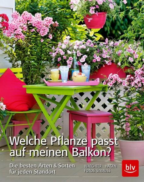 Buch 'Welche Pflanze passt auf meinen Balkon?'