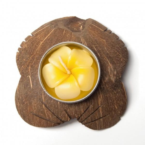 """Kokosnussteelicht """"Plumeria"""", gelb/braun, Ø 7 cm"""