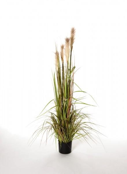 """Kunstpflanze """"Riedgras"""", H 120 cm"""