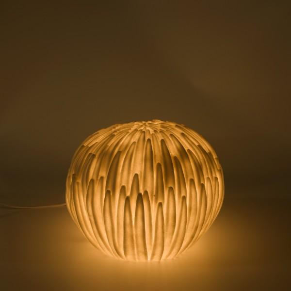 Indoor-Leuchte 'Schilfgras', B 30 cm, H 23 cm