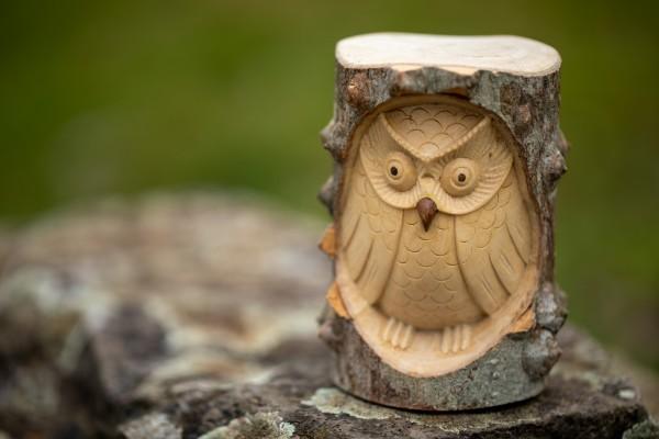 handgeschnitzte Eule in Holzstamm, natur, ⌀ 10 cm, H 12 cm