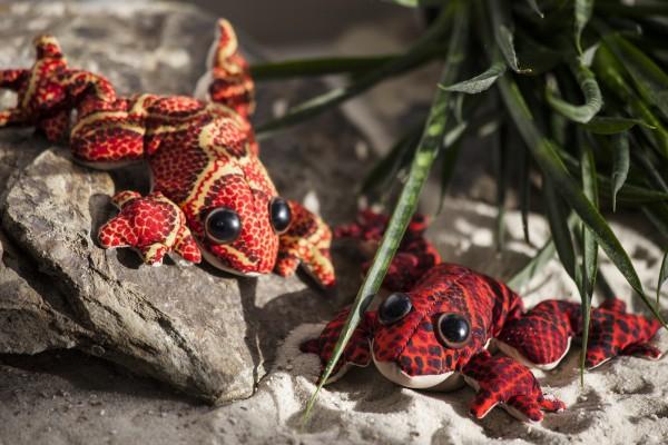 Sandtier 'Frosch' M, multicolor, L 10 cm