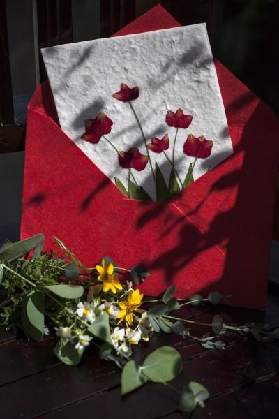 Geschenkkarte Blume Tulpe rot, L 17 cm, B 12 cm, H 1 cm