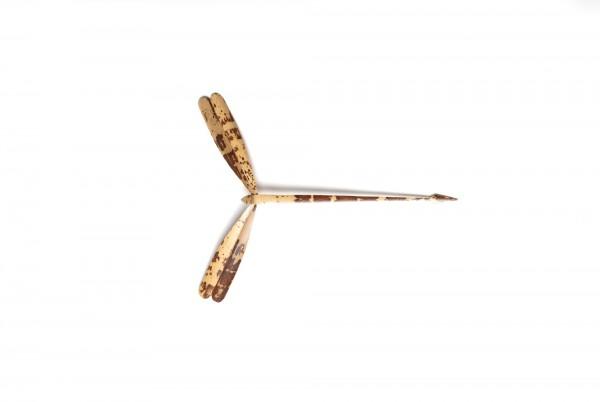 Bambus-Libelle, gesprenkelt, , T 33 cm, B 30 cm, H 3 cm