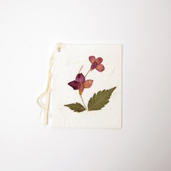 Geschenk-Grußkarten, B 6 cm, H 7 cm